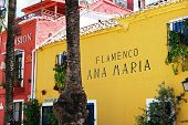 Flamenco School, Marbella.