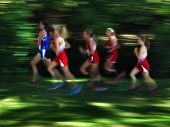 View of several women runners blurred running race