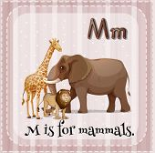 Illustration of a letter M is for mammals