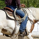 image of lasso  - Part of cowboy equipment for horse riding  - JPG