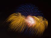 pic of night-blooming  - spectacular beautiful bright fireworks a fire blooming colorful flowers in the night black sky - JPG