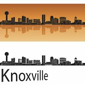 foto of knoxville tennessee  - Knoxville skyline in orange background in editable vector file - JPG