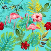 pic of flamingo  - EXOTIC FLAMINGO PATTER  - JPG