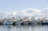 Fishing Boats In Garrucha Harbour, Spain.
