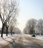 Winter Suburban Wonderland3