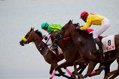 Horse Race On Sanlucar Of Barrameda, Spain, August  2010