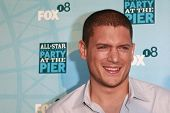 SANTA MONICA - JULY 14: Wentworth Miller at the Fox TCA Summer Party in Santa Monica, California on July 14, 2008.