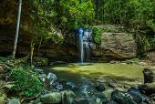 Serenity Falls and a swimming hole in Buderim Forest Park, Sunshine Coast, Queensland, Australia poster