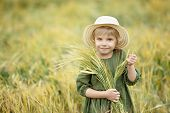 Happy Girl Walking In Golden Wheat, Enjoying The Life In The Field. Nature Beauty And Field Of Wheat poster