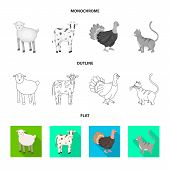 Vector Design Of Breeding And Kitchen Icon. Collection Of Breeding And Organic Stock Vector Illustra poster