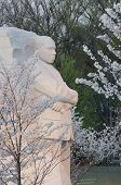 Martin Luther King Memorial in spring, Washington DC, United States