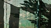 Abstract Shadows On Grunge Green Distressed Wall Protected With Wire Mesh Fence. Blurry Spotted Shad poster