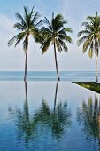 The magnificent swimming pool built on the beach of Koh Samui. Blue ocean and the pool divided three picturesque palm trees.