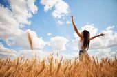 Happy woman enjoying the life in the field. Nature beauty, blue sky,white clouds and field with gold poster