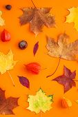 Creative Top View Flat Lay Autumn Concept Composition. Dried Bright Autumn Leaves Orange Paper Frame poster