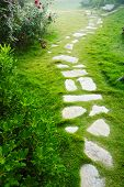 stock photo of stepping stones  - Stone walkway winding in garden in summer - JPG