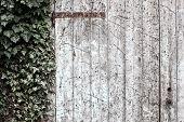 Old barn doors, Italian Architecture - Emilia Romagna