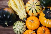 Assorted pumpkins and squashes