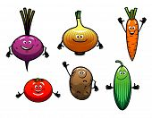 Beet, onion, carrot, tomato, potato and cucumber