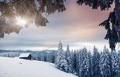 Fantastic winter landscape. Dramatic overcast sky. National Park. Carpathian, Ukraine, Europe. Beauty world.