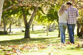 Rear View Of Romantic Couple Walking Through Autumn Woodland