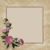 Aster Flowers Composition And Frame