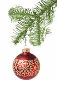 Christmas tree branch with hanging red ornament on white