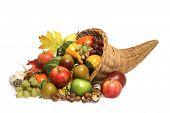 cornucopia on white background