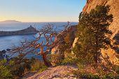Evening landscape with beautiful sunshine on the rocks. Mountain landscape with forest on the coast. Crimea, Ukraine, Europe