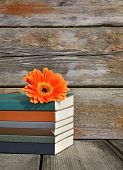 books on wooden deck over grunge background