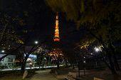 TOKYO JAPAN - NOVEMBER 28: night time view of Tokyo tower
