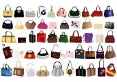Vector illustration of modern bags for woman