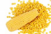 Corncobs and canned corns.