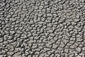 Cracked Dry Mud Drought Concept Nature Background