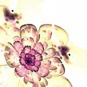 Dark Yellow Fractal Flower Pattern