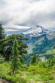Beautiful Mountain Artist Ridge Trail Park. Mount Baker, Washington, USA.