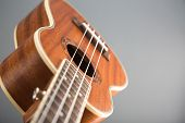 Close-up shot of ukulele guitar, studio shot on grey background, selective focus