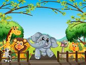 Illustration of a group of wild animals at the bridge in the forest