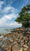 Coast Of The Tropical Sea. Vertical Landscape. Thailand, Phuket Island