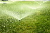 stock photo of sprinkler  - garden sprinkler on a sunny summer day during watering the green lawn - JPG