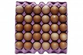 Closeup of eggs in tray on plain background