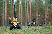 Ponsse Forwarder And Harvester Working In Forest