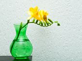 yellow freesia in green vase
