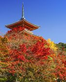 Kyoto, Japan at Kiyomizudera Temple in the autumn season.