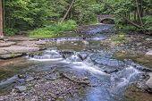 Wolf Creek At Letchworth