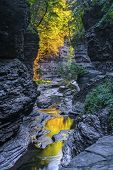 The Early Morning Color Of Watkins Glen State Park