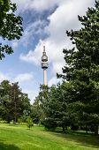 Florian  Tower