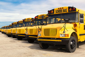 picture of truck-stop  - row of yellow school buses lined up in a parking lot - JPG