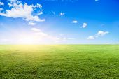 stock photo of grassland  - Grassland under the blue sky - JPG