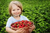 cheerful boy with basket of strawberry